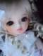 Volks BALL JOINT DOLL BJD